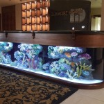 Reception-aquarium